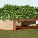 Edible Hut, 2011-2013, wood, edible perennial plants and crushed red brick. Collaborative project. Photo: PD Rearick