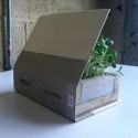 """Sprouting Book,  2012, wood, soil, sunflower seeds, water and cloth, 8.5"""" x 5.5"""" x 3.5"""""""